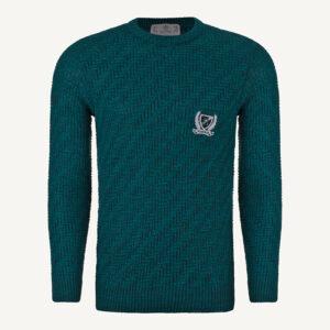 لباس زمستانی پلیور مردانه بافت یقه گرد شیک 2186 سبز یشمی